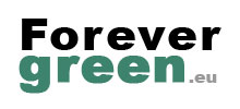 Forevergreen Algues